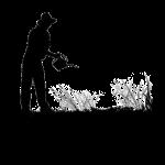 Banque de graines et Jardinage