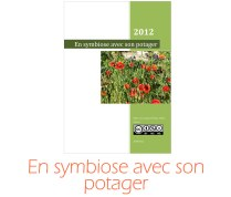 symbiose_potager