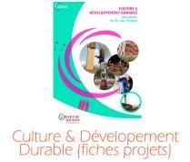 Culture_developpement